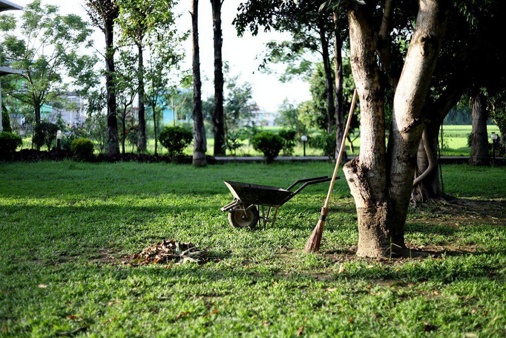 Futurum F Zahradnické a úklidové služby